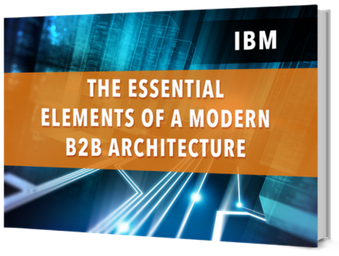 Ebook Essential Elements of a Modern B2B Architecture