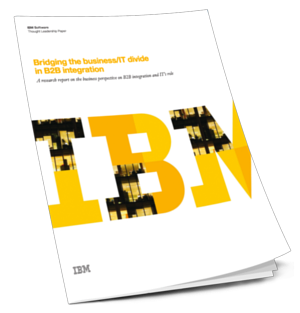 IBM_-_B2B_Int._Rethinking_the_IT_Bus_Divide_CTA_3d_image_or_own_design.png