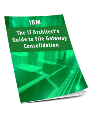 IBM_-_WP-_IT_Architects_Guide_to_File_Transfer_Consolidation_CTA_3d_image.png